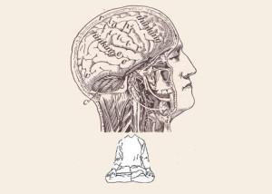 contemplativeneuroscience_feature